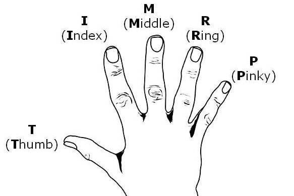 رموز أصابع اليد وقراءة تسلسل الضربات